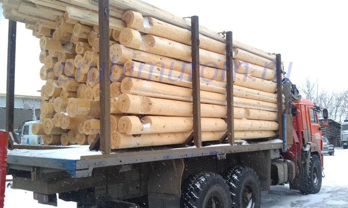 Сосна - лучший материал для рубки бани (сравнение древесины)
